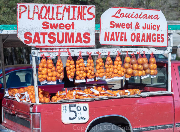 produce truck selling satsuma and navel oranges