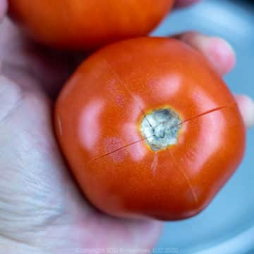 a fresh tomato with a crosshatch cut in the top