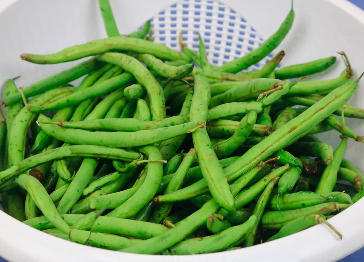 fresh green beans in a white colander