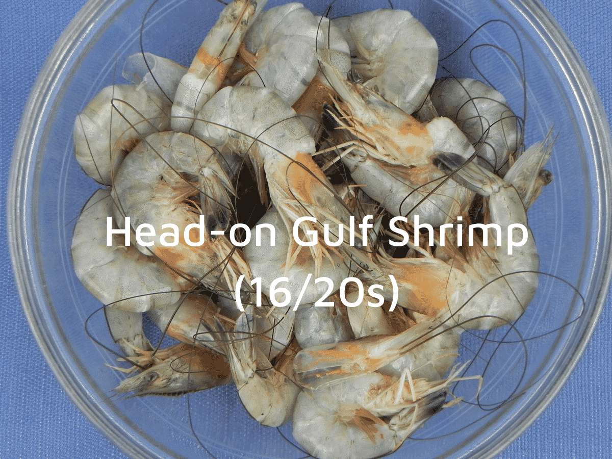 large head-on gulf shrimp in a glass bowl
