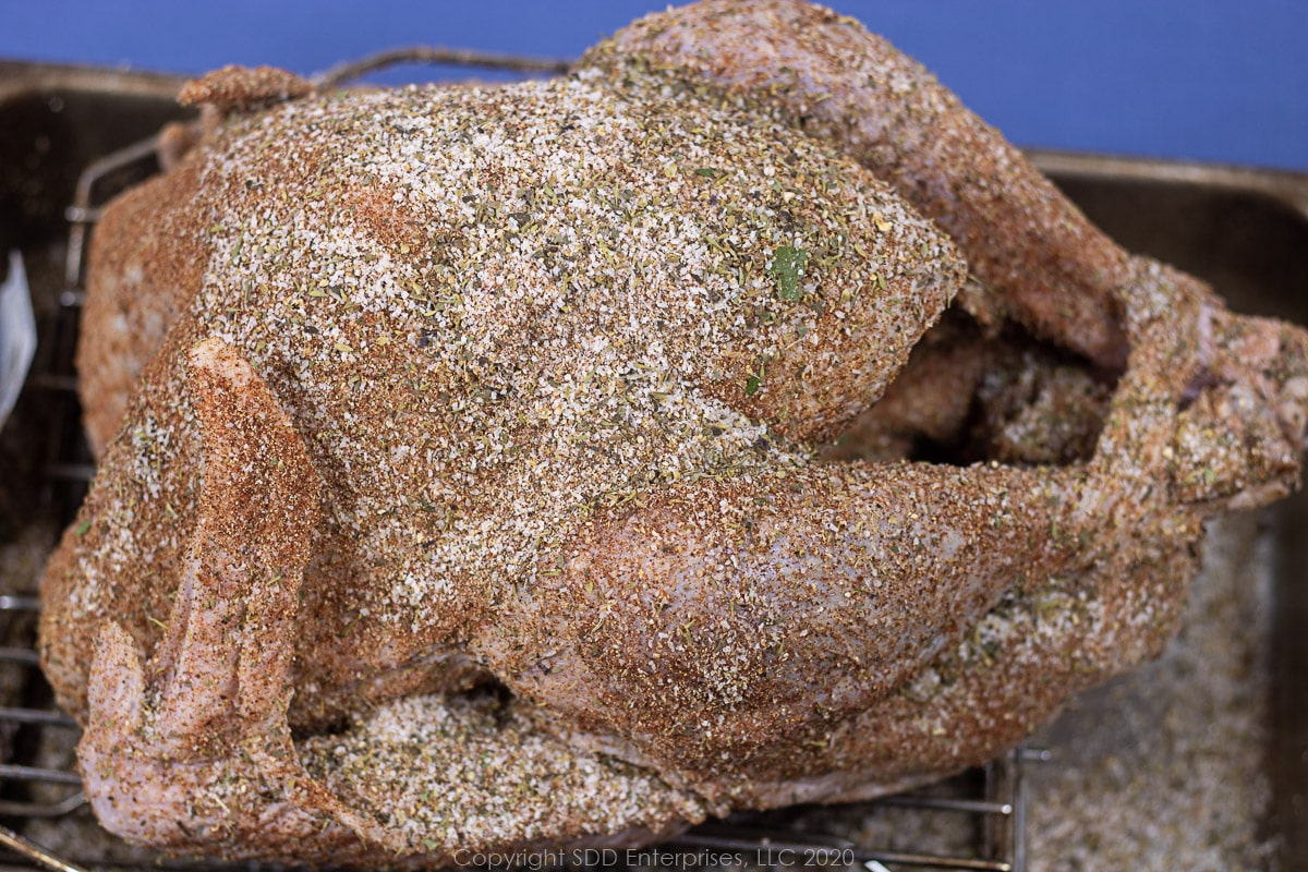 uncooked whole turkey with dry brine applied